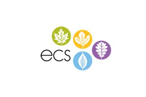 ecs_Small